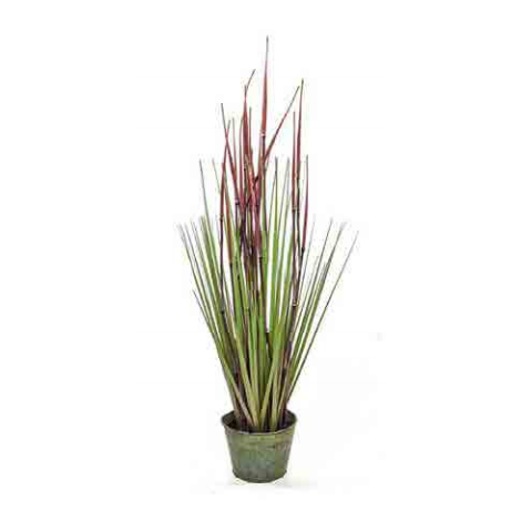 Tree Locate Bamboo Grass In Zinc Pot
