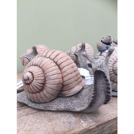 Oakley Snail