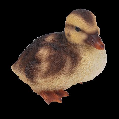 Vivid Arts Duckling
