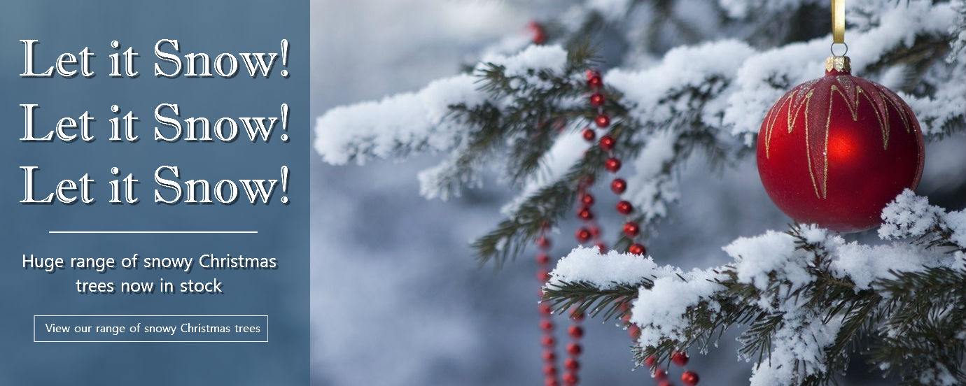 snowy-banner